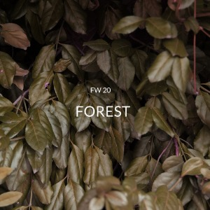 FW20  [ FOREST ]